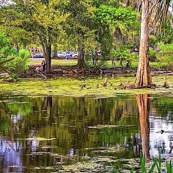 Steve Harrington - City Park Lagoon - Waterfowl Watching