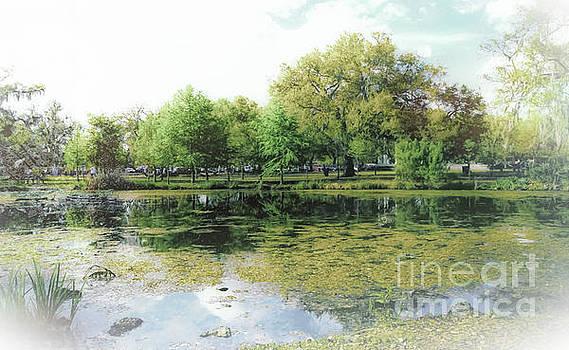 Kathleen K Parker - City Park New Orleans Lagoon