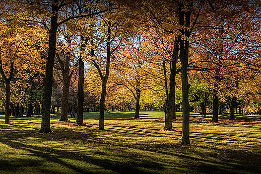 Randall Nyhof - City Park Scene in Autumn with Shadows