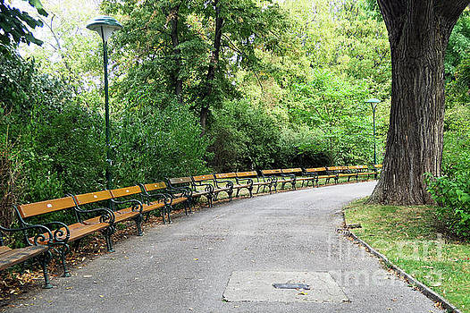 Christian Slanec - City Park, Vienna
