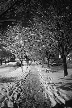 City Sidewalks by Ben Shields