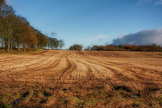 Clackmannanshire countryside by Jeremy Lavender Photography