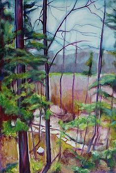 Clair Creek I by Sheila Diemert