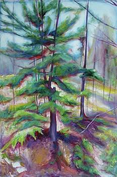 Clair Creek II by Sheila Diemert