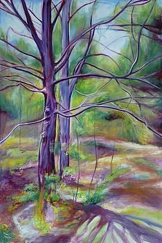Clair Creek III by Sheila Diemert