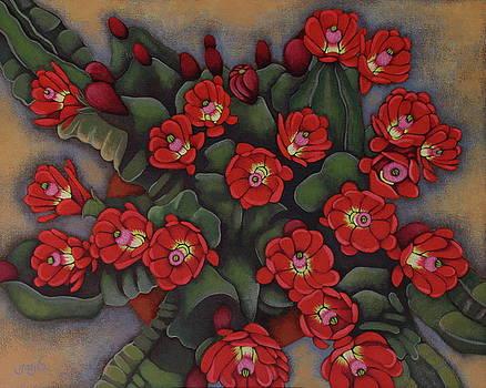Claret Cup Cactus by Gayle Faucette Wisbon