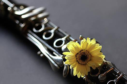 Angela Murdock - Clarinet and Flower