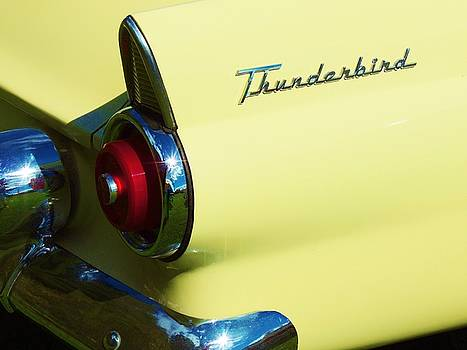 1955 Ford Thunderbird by Lisa Gilliam