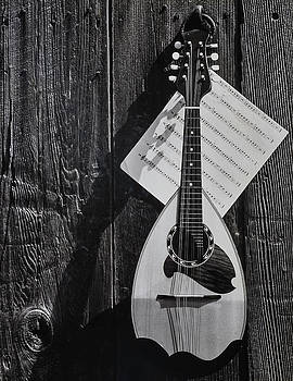 Classic Mandolin Hanging On Wall by Garry Gay