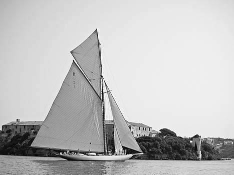 Pedro Cardona Llambias - Classic tall ship in calm waters
