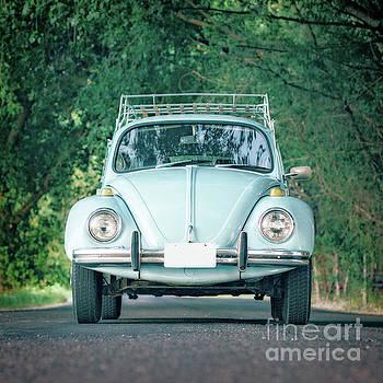 Edward Fielding - Classic Vintage VW Bug Blue