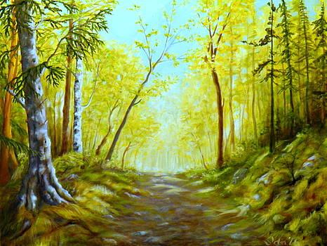 Clayton Falls road by Ida Eriksen