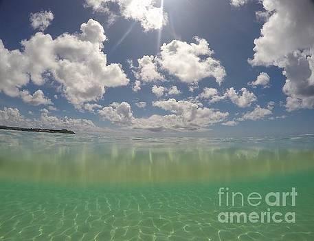 Cleansing of Guam by A Cyaltsa Finkbonner