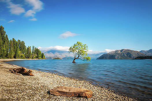 Clear blue morning at lake Wanaka by Daniela Constantinescu