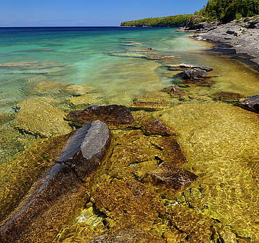 Reimar Gaertner - Clear clean water on the limestone shore of Little Cove Bruce Pe