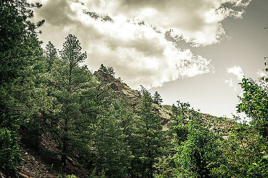 Clear Creek Canyon by Jeanette Fellows
