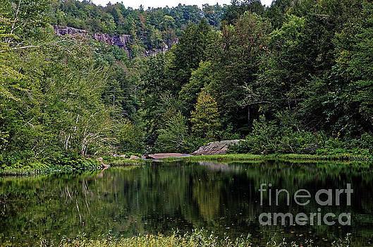 Paul Mashburn - Clear Creek Reflection