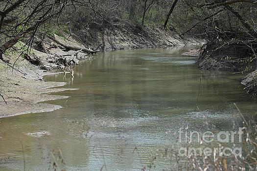 Clear Creek  by Ruth Housley