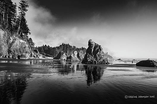 Clear Day At Ruby Beach by Cassius Johnson