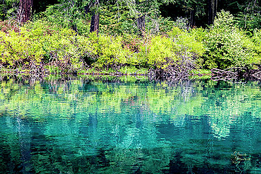 Clear Lake by David Millenheft