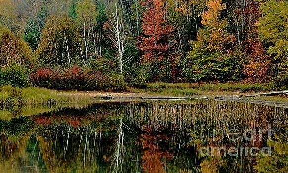 Matthew Winn - Clear Lake in Autumn