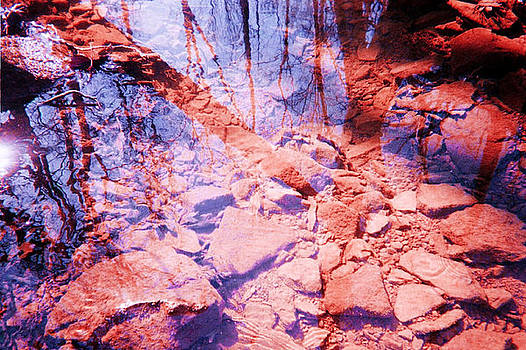 Clear Mountain Creek by Lynn Wood
