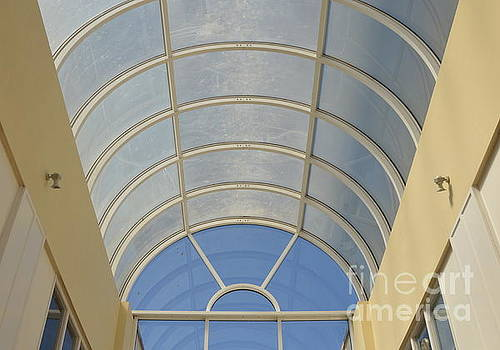 Clear Roof by Andy Thompson