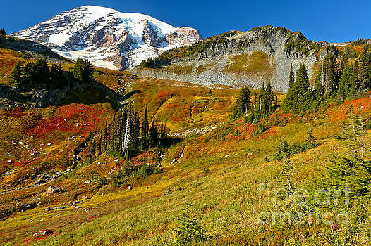 Adam Jewell - Clear SKies Over Paradise Meadows