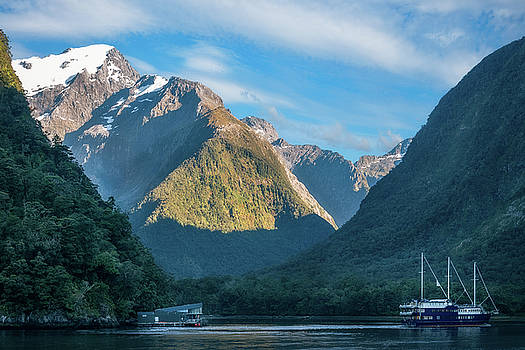 Clear sunny morning at Harrison Cove -Milford Sound by Daniela Constantinescu