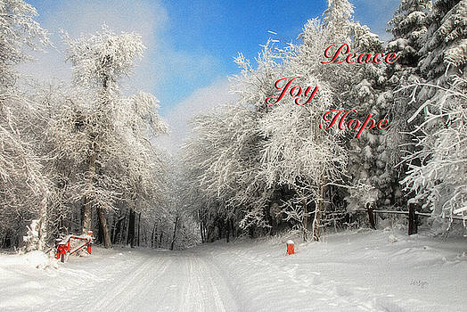 Lois Bryan - Clearing Skies Christmas Card