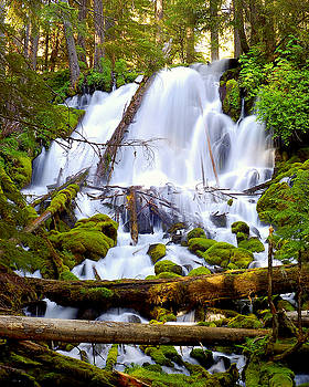 Clearwater Falls by Scott Gould