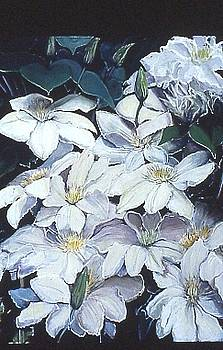 Clematis by Elaine Ward