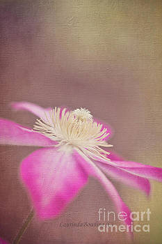 Clematis by Laurinda Bowling
