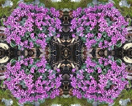 Clematis Mandala 1 by Julia Woodman