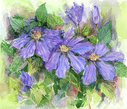 Clematis by Garden Gate