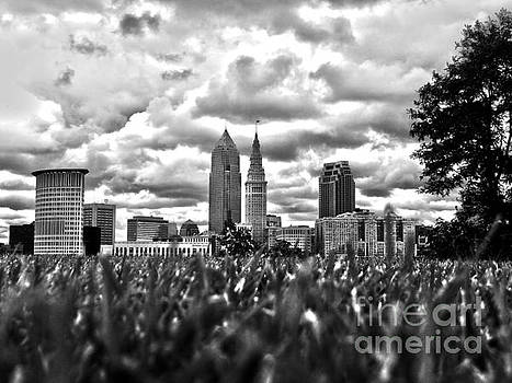 Cleveland on the Lawn by Mike Bruckman