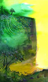Cliff by Anil Nene
