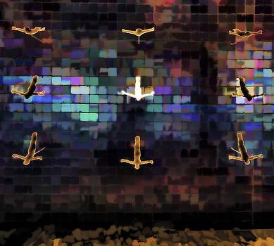 Cliff Diver Wall by Steve Siri