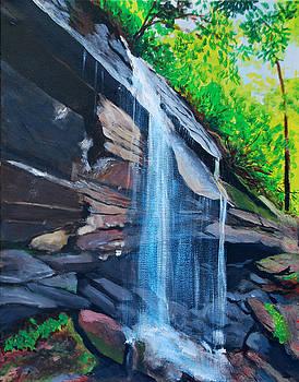 Cliff Falls by David Carson Taylor