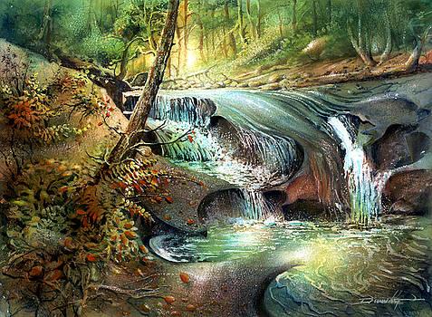 Cliff Falls by Dumitru Barliga