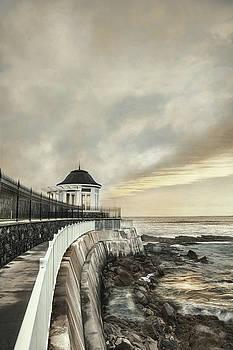 Cliff Walk Newport by Robin-Lee Vieira