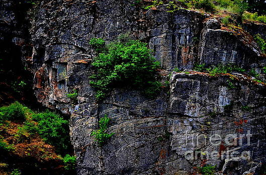 Cliffhanger by Greg Patzer