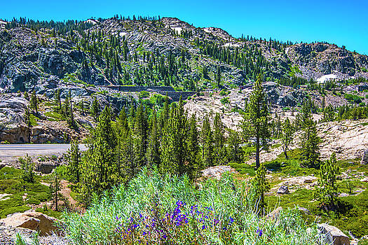 Cliffs Above Donner Lake II by Steven Ainsworth