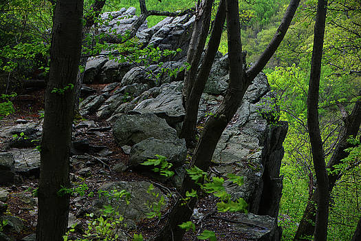 Annapolis Rock by Raymond Salani III