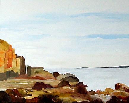 Cliffs by the Seaside by Carola Ann-Margret Forsberg