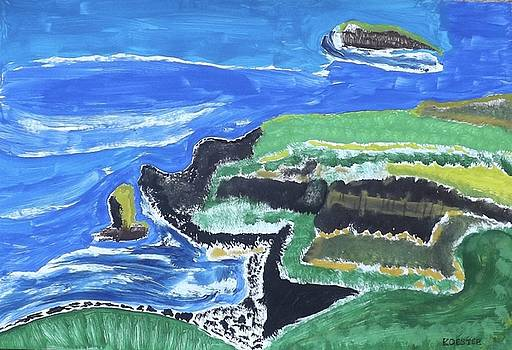Cliffs Of Moher Ireland by Don Koester