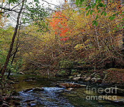 Clifty Creek Fall by Paul Mashburn