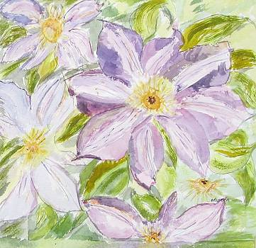 Climatis by Barbara Pearston