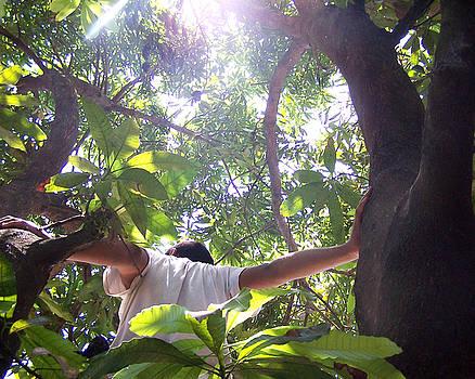 Junieth - Climbing High