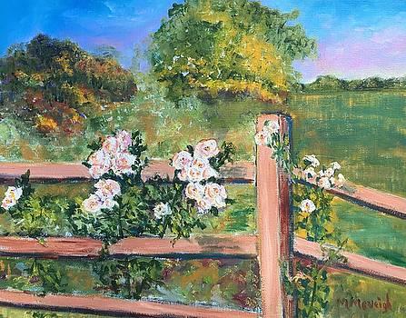 Climbing Roses by Marita McVeigh